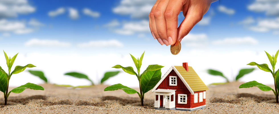 investing in property tips